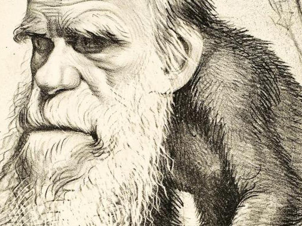 """""""Min Fader var en Abekat … Tipoldefar – ja han var Dynd"""" Fønix genudgiver om Darwin, evolutionslæren og teologien"""